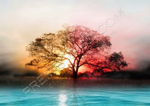 High Resolution Amazing Sun Set wallpaper Design, PSD Download