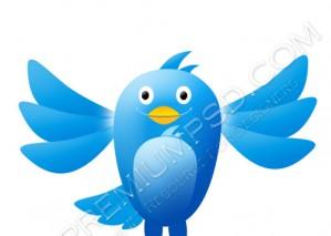 High Resolution New Twitter Bird Design – PSD Download