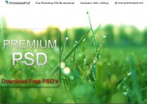 Vista Menu Style, Step by Step Tutorial With PSD Source