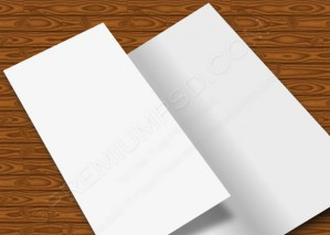 Blank Custom Vector Brochure Design – PSD Download