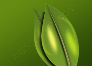 Green Tree Leaves Design – PSD Download