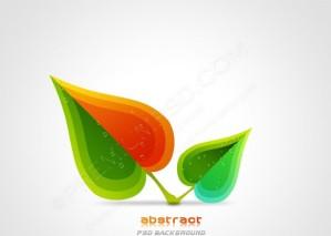Vector Nature Leaf Design – PSD Download