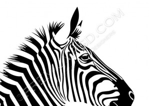 Black Zebra Vector – PSD Download