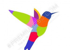 Colorful Hummingbird Vector – PSD Download