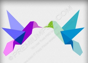 Colorfull Birds Vector – PSD Download
