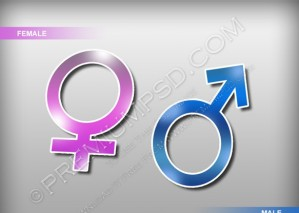 Male and Female Signs Vectors – PSD Download