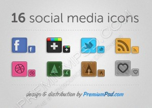 16 Social Media Icons (Buttons)
