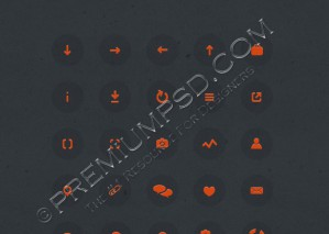 Vector Circle Icon Set
