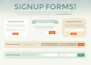 Newsletter Sign-up Forms